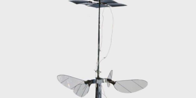 Робот-пчела RoboBee X-Wing работает на солнечной энергии