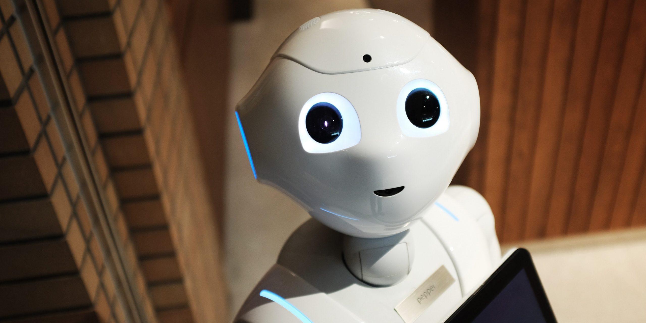 В «Сколково» начал работать робот-курьер «Яндекс.Ровер»