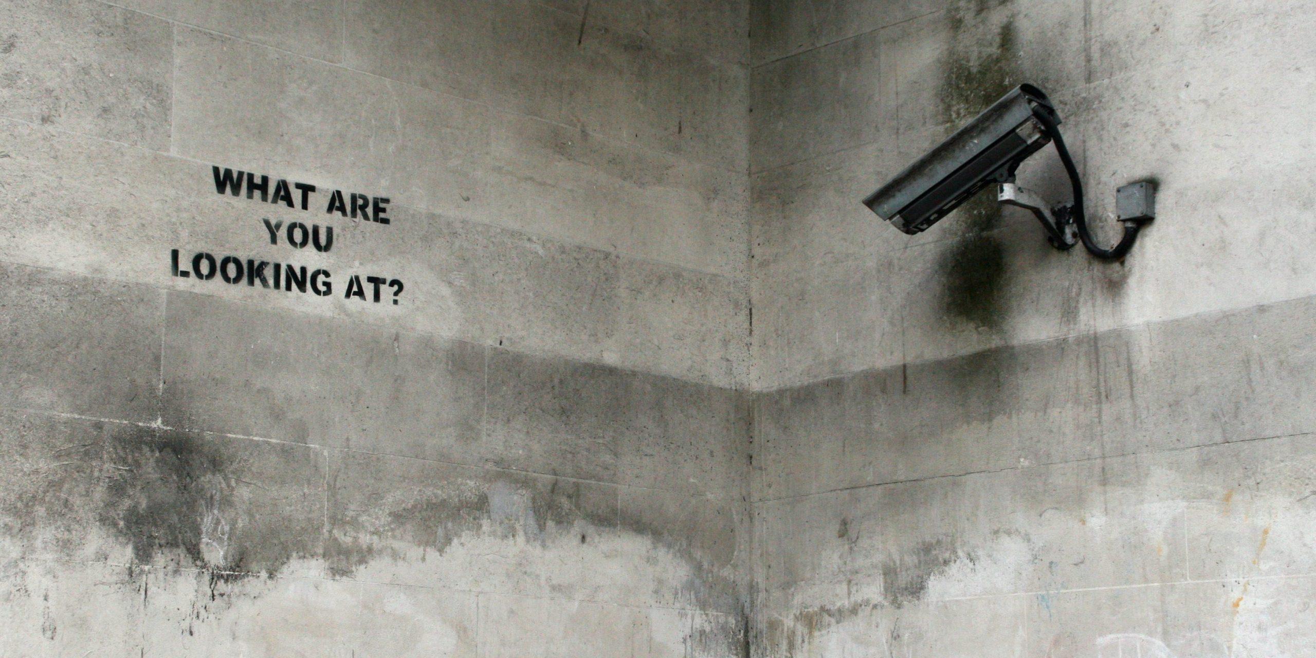 Умные камеры остановят турбину ветрогенератора, если заметят птицу из Красной книги