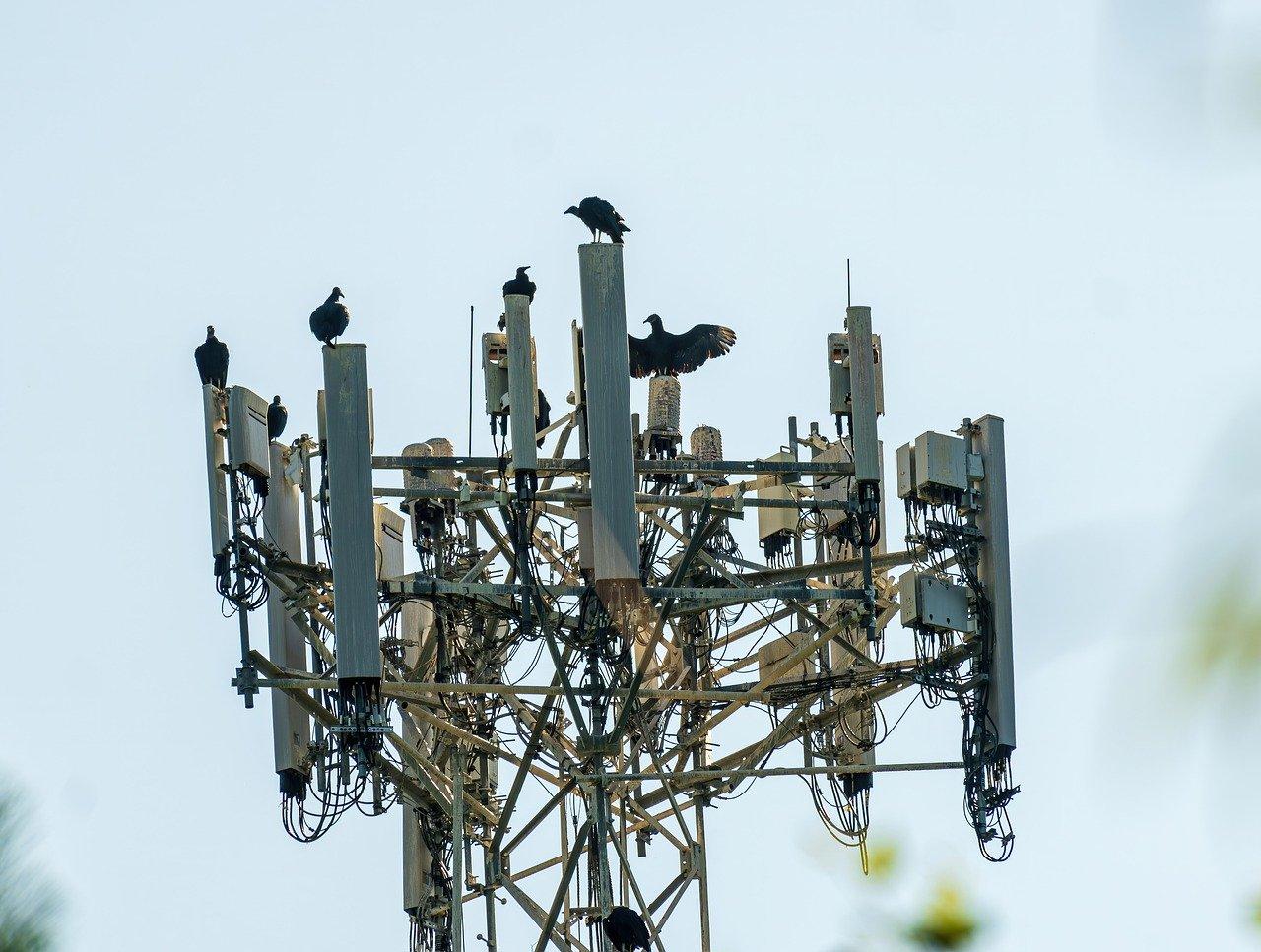 Минцифры начало работы по созданию в России сетей 6G